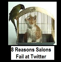 Top 8 Reasons Top Salons Fail at Twitter